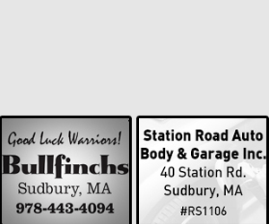 STATION ROAD AUTO BODY & GARAGE INC & BULLFINCHS