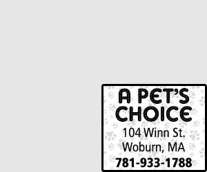 A PETS CHOICE