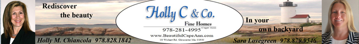 HOLLY C & CO INC FINE HOMES