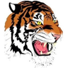 Newton North/South Tigers