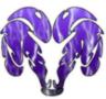 Shawsheen Bedford Rams